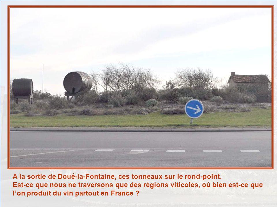 A la sortie de Doué-la-Fontaine, ces tonneaux sur le rond-point.