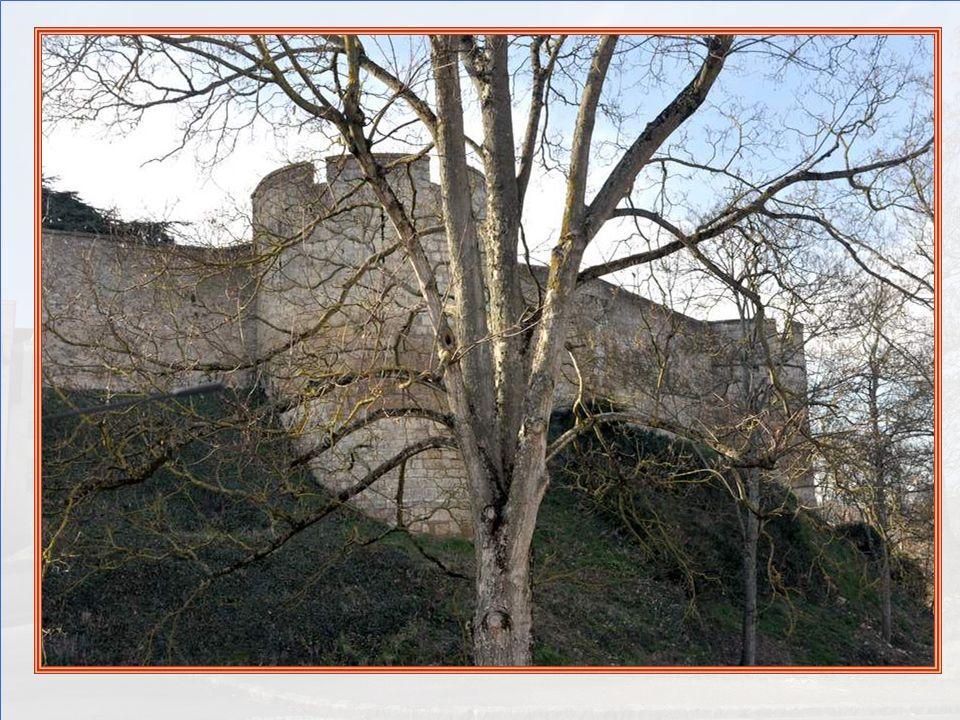 Sur les bords du Thouet, qui prend sa source à 20 km au nord-est du marais poitevin dans le département des Deux-Sèvres, la ville de Montreuil-Bellay,