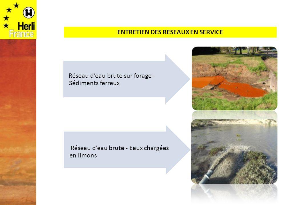 Réseau deau brute sur forage - Sédiments ferreux Réseau deau brute - Eaux chargées en limons ENTRETIEN DES RESEAUX EN SERVICE