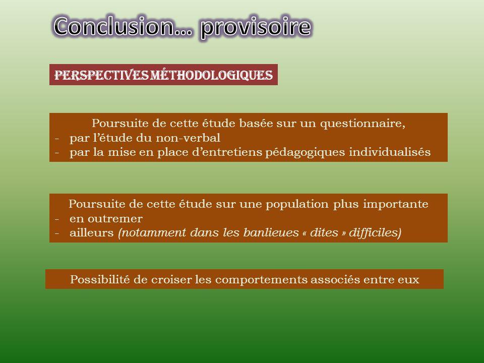 Perspectives méthodologiques Poursuite de cette étude basée sur un questionnaire, -par létude du non-verbal -par la mise en place dentretiens pédagogi