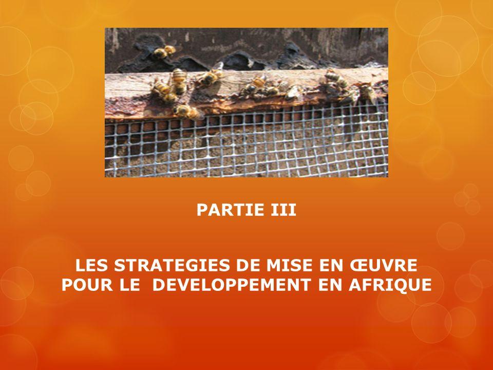 PARTIE III LES STRATEGIES DE MISE EN ŒUVRE POUR LE DEVELOPPEMENT EN AFRIQUE