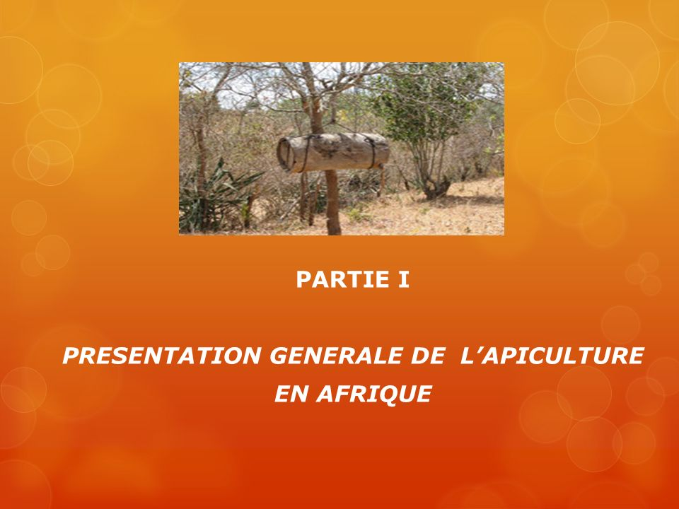 PARTIE I PRESENTATION GENERALE DE LAPICULTURE EN AFRIQUE