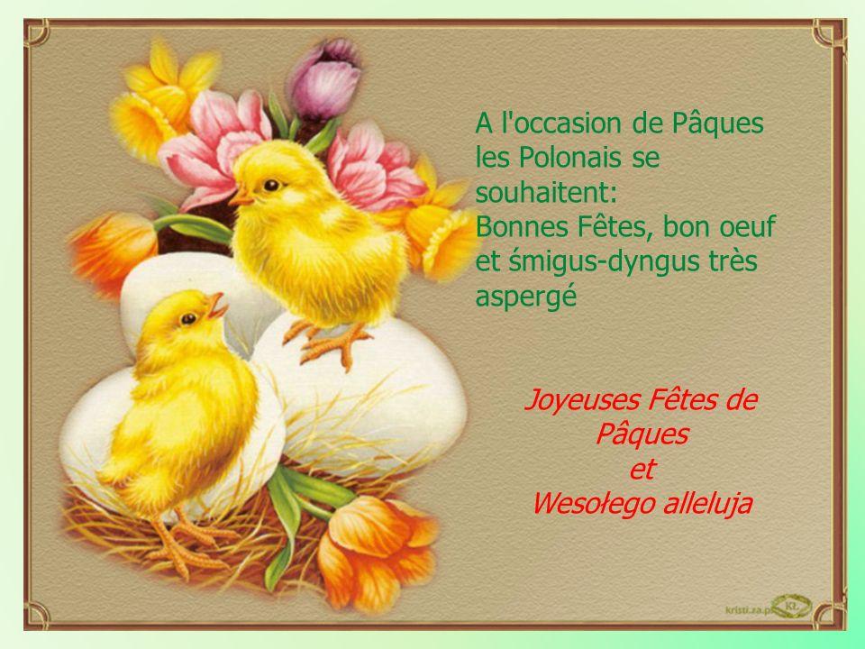 A l'occasion de Pâques les Polonais se souhaitent: Bonnes Fêtes, bon oeuf et śmigus-dyngus très aspergé Joyeuses Fêtes de Pâques et Wesołego alleluja