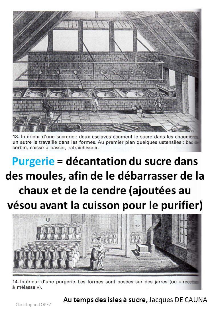Au temps des isles à sucre, Jacques DE CAUNA Purgerie = décantation du sucre dans des moules, afin de le débarrasser de la chaux et de la cendre (ajoutées au vésou avant la cuisson pour le purifier) Christophe LOPEZ