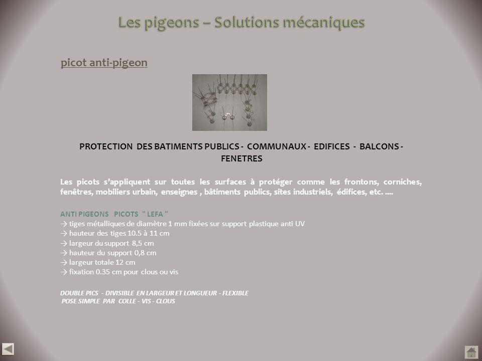 picot anti-pigeon