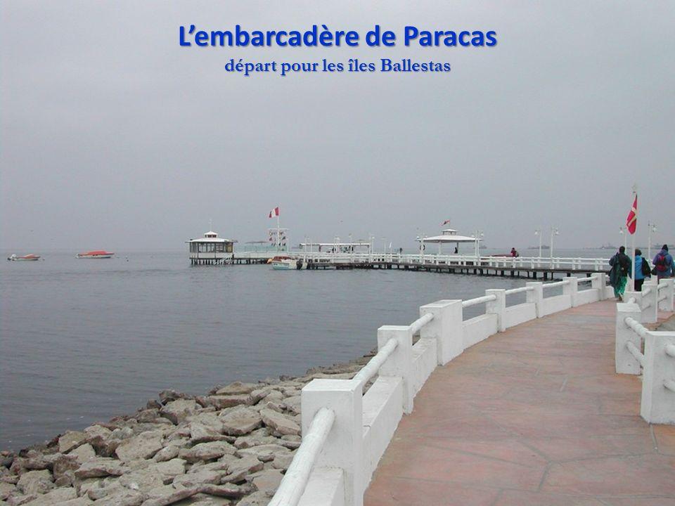 Lembarcadère de Paracas départ pour les îles Ballestas