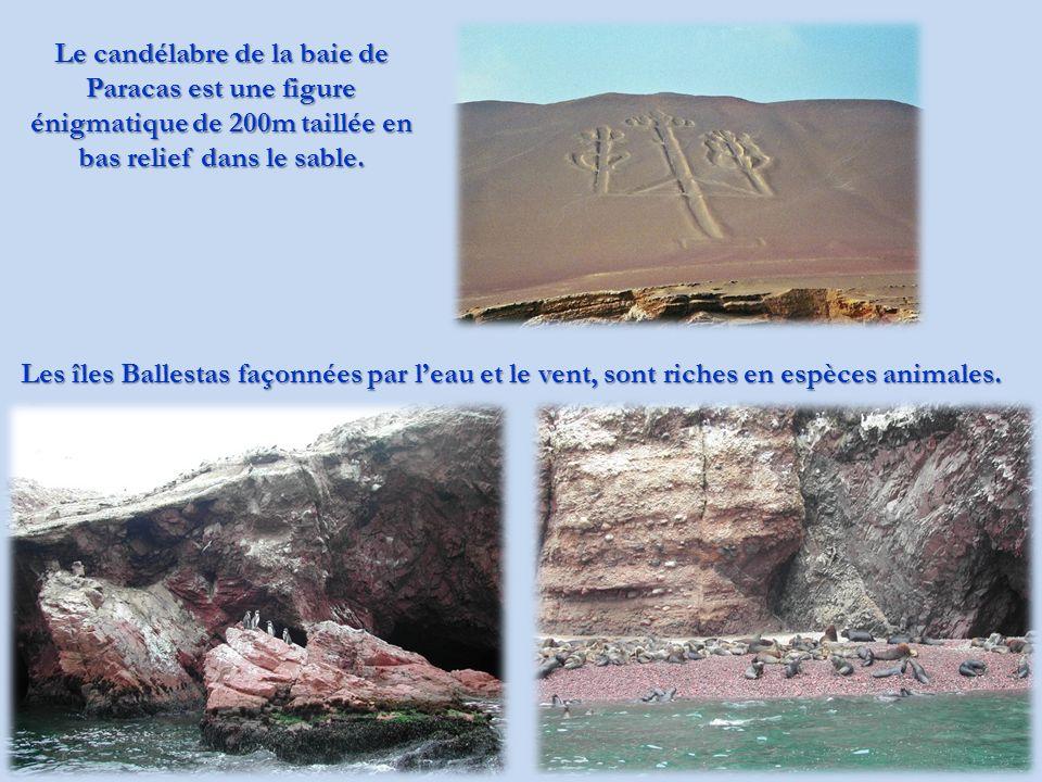 Le candélabre de la baie de Paracas est une figure énigmatique de 200m taillée en bas relief dans le sable.
