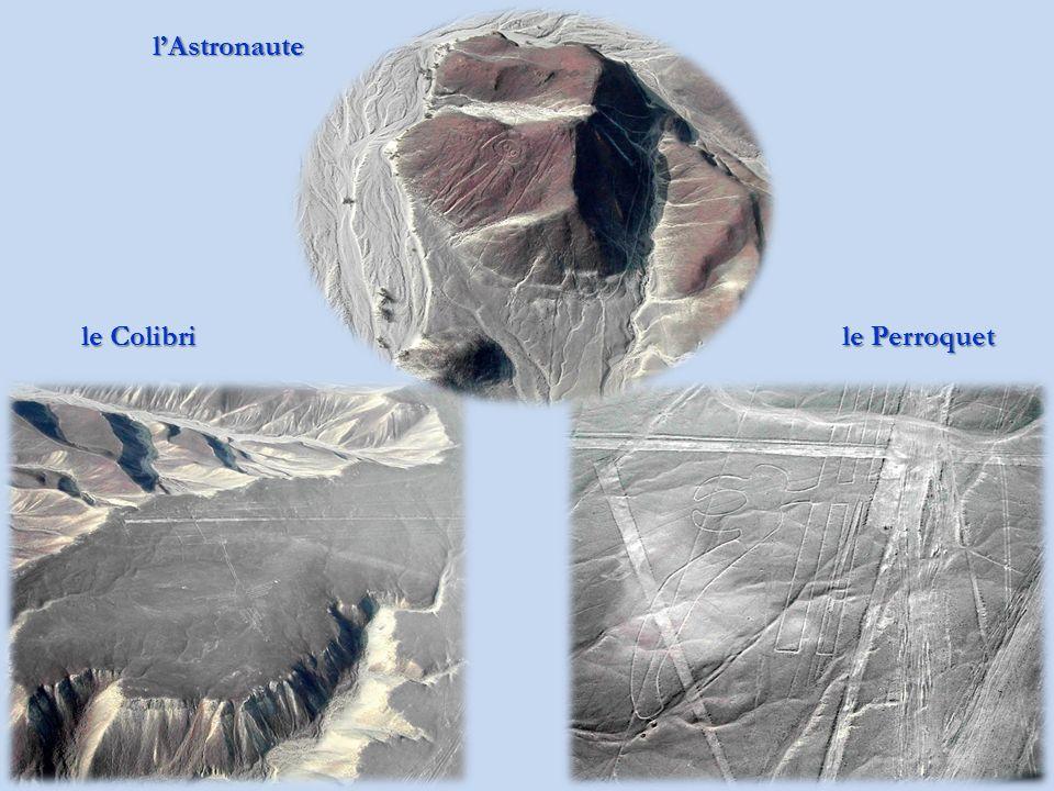 Départ pour les lignes de Nazca