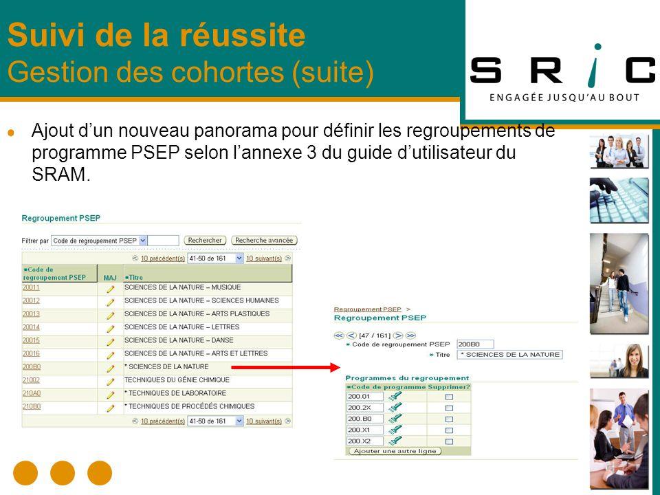 Ajout dun nouveau panorama pour définir les regroupements de programme PSEP selon lannexe 3 du guide dutilisateur du SRAM.