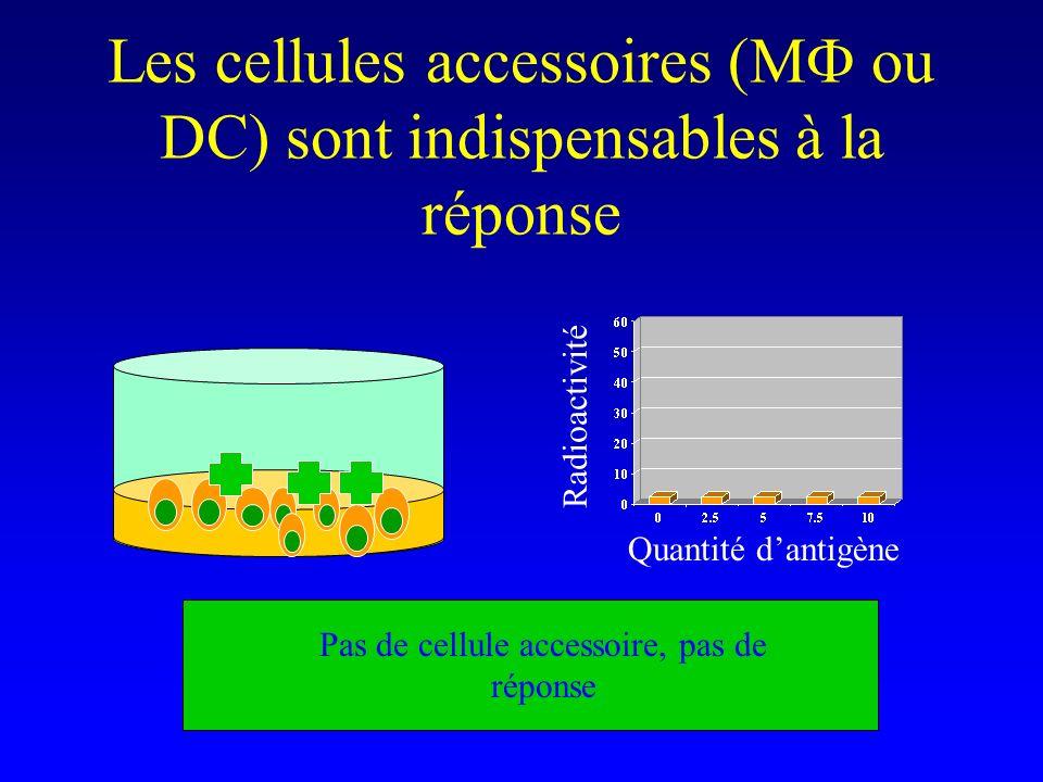 Les cellules accessoires (M ou DC) sont indispensables à la réponse Pas de cellule accessoire, pas de réponse Quantité dantigène Radioactivité