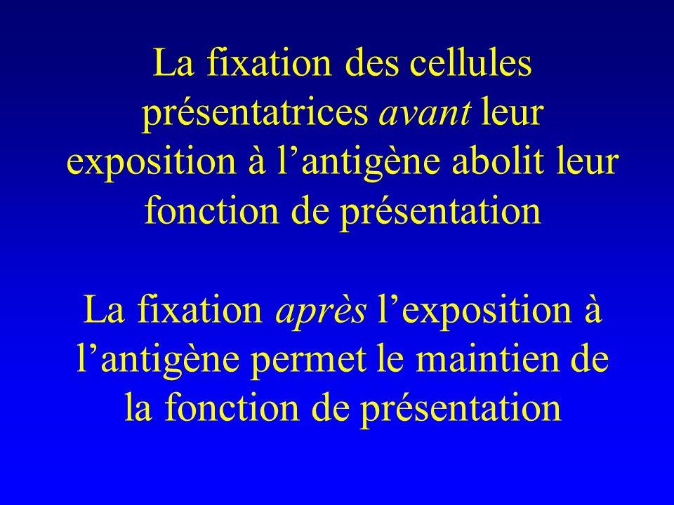 La fixation des cellules présentatrices avant leur exposition à lantigène abolit leur fonction de présentation La fixation après lexposition à lantigè