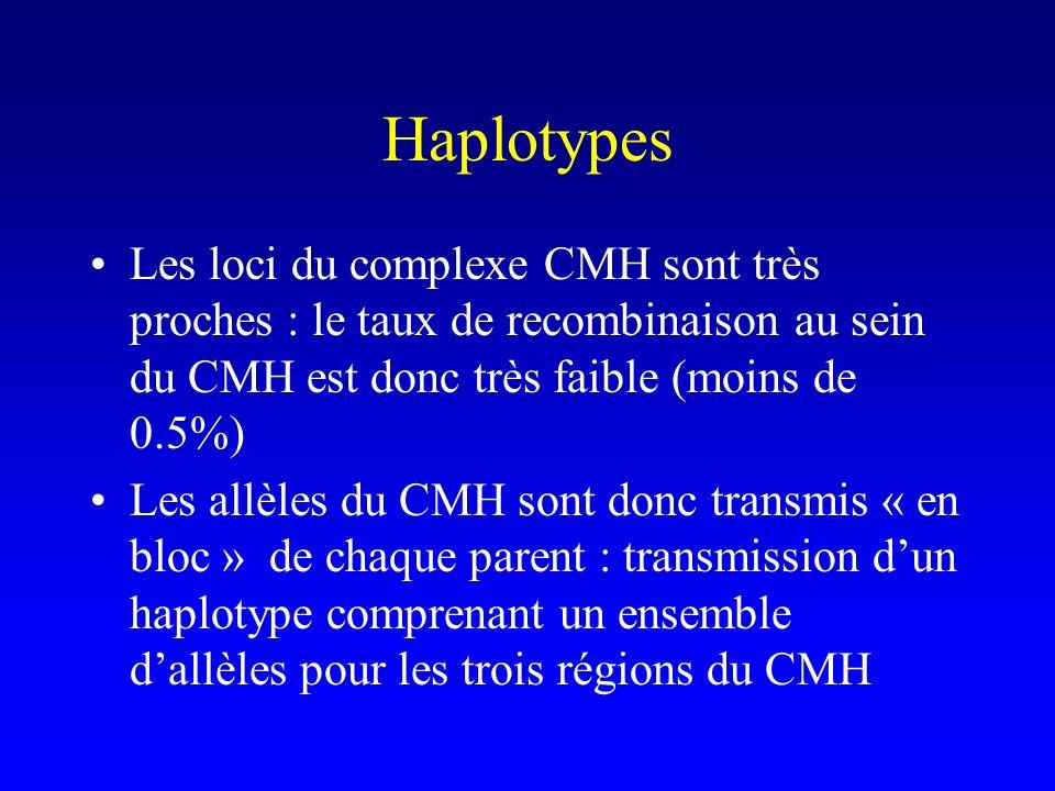 Haplotypes Les loci du complexe CMH sont très proches : le taux de recombinaison au sein du CMH est donc très faible (moins de 0.5%) Les allèles du CM