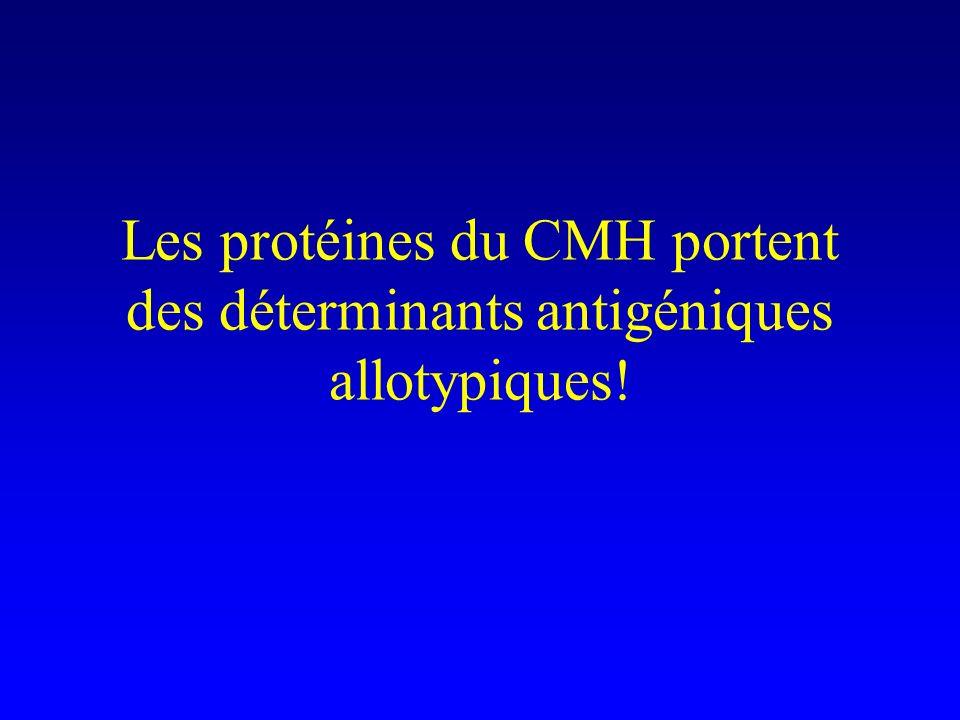 Les protéines du CMH portent des déterminants antigéniques allotypiques!
