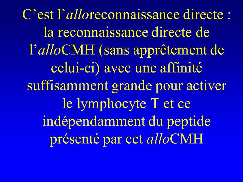 Cest lalloreconnaissance directe : la reconnaissance directe de lalloCMH (sans apprêtement de celui-ci) avec une affinité suffisamment grande pour act
