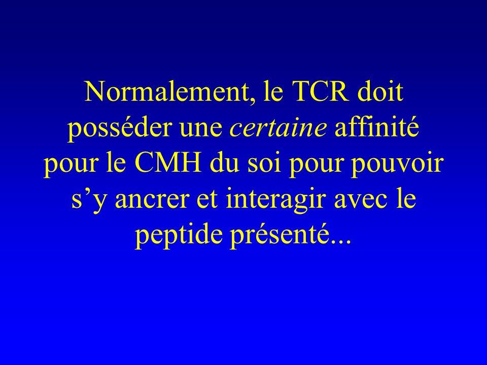 Normalement, le TCR doit posséder une certaine affinité pour le CMH du soi pour pouvoir sy ancrer et interagir avec le peptide présenté...