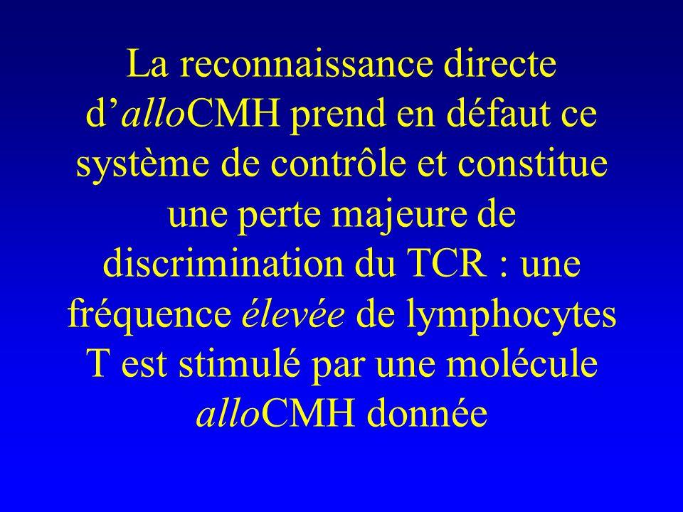 La reconnaissance directe dalloCMH prend en défaut ce système de contrôle et constitue une perte majeure de discrimination du TCR : une fréquence élev