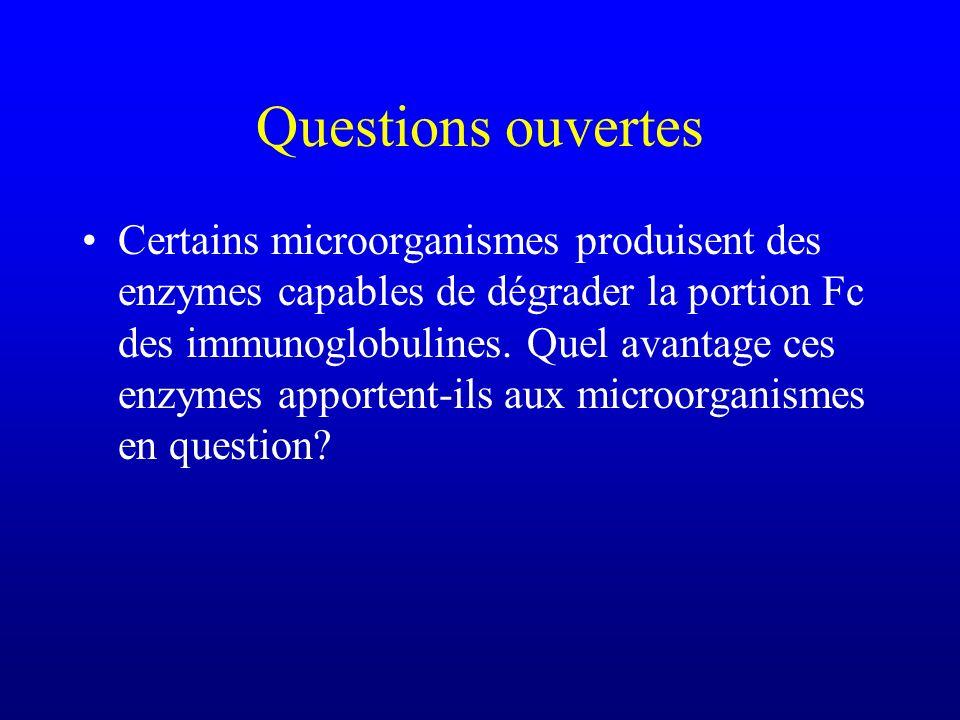 Questions ouvertes Certains microorganismes produisent des enzymes capables de dégrader la portion Fc des immunoglobulines. Quel avantage ces enzymes