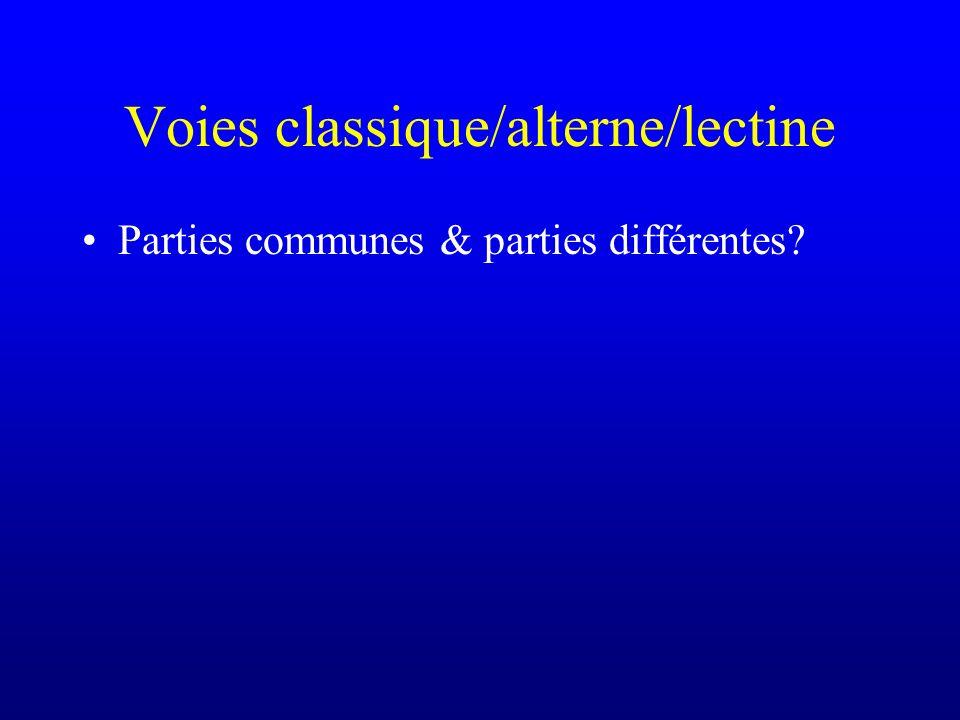 Voies classique/alterne/lectine Parties communes & parties différentes?