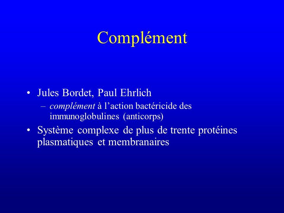 Jules Bordet, Paul Ehrlich –complément à laction bactéricide des immunoglobulines (anticorps) Système complexe de plus de trente protéines plasmatique
