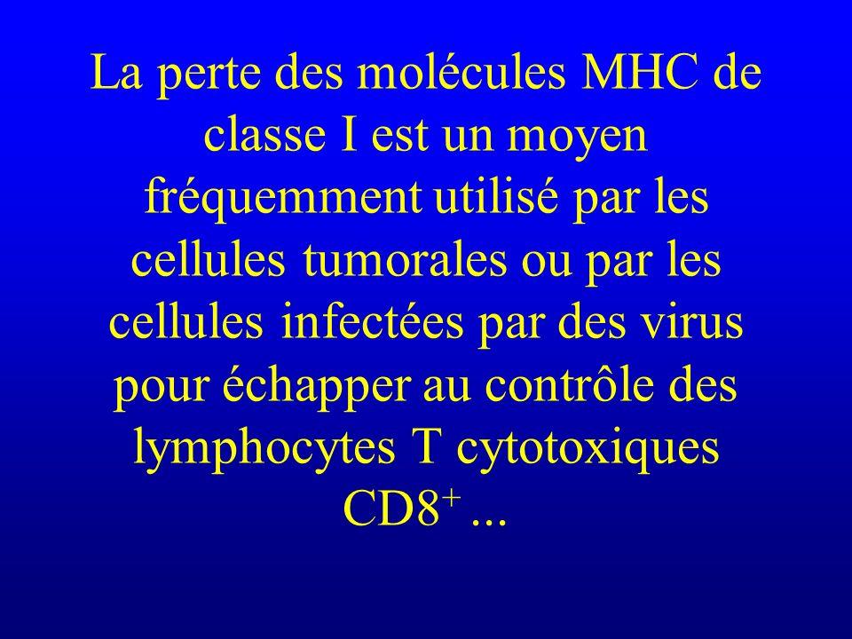 La perte des molécules MHC de classe I est un moyen fréquemment utilisé par les cellules tumorales ou par les cellules infectées par des virus pour éc