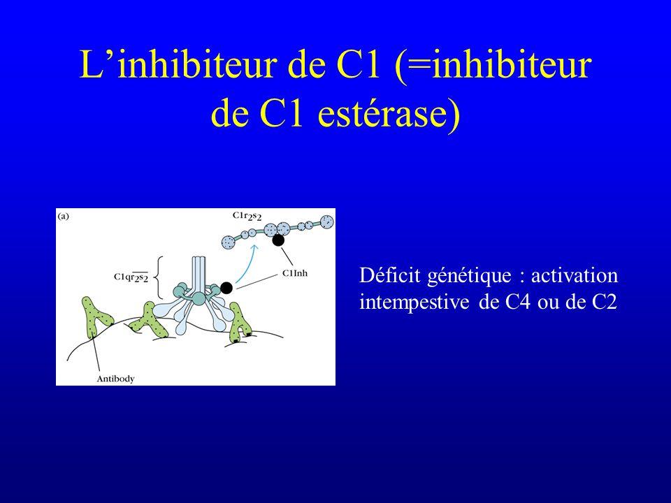 Déficit génétique : activation intempestive de C4 ou de C2