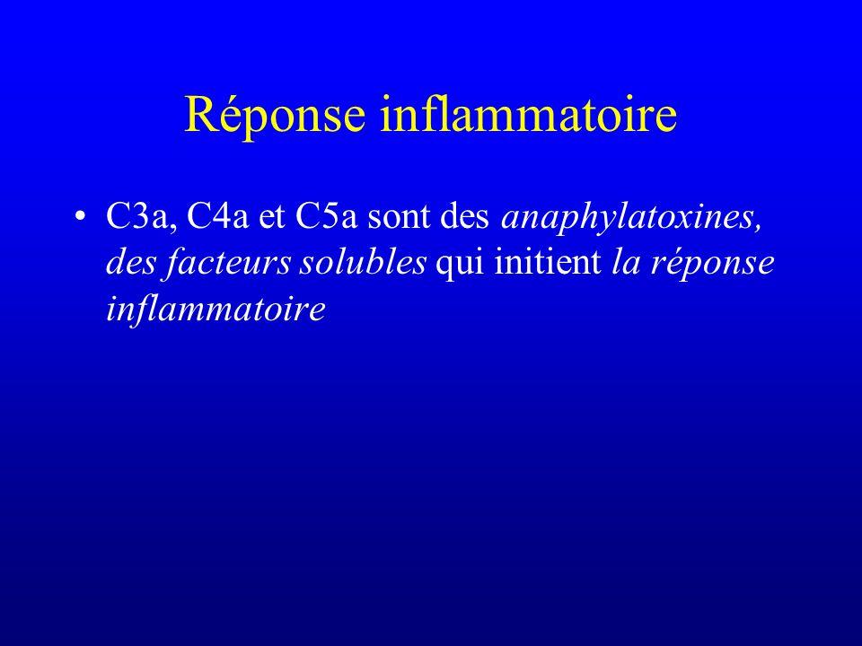 Réponse inflammatoire C3a, C4a et C5a sont des anaphylatoxines, des facteurs solubles qui initient la réponse inflammatoire