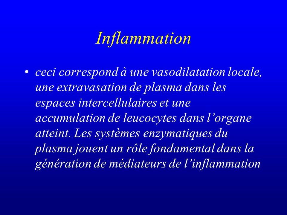 Inflammation ceci correspond à une vasodilatation locale, une extravasation de plasma dans les espaces intercellulaires et une accumulation de leucocy