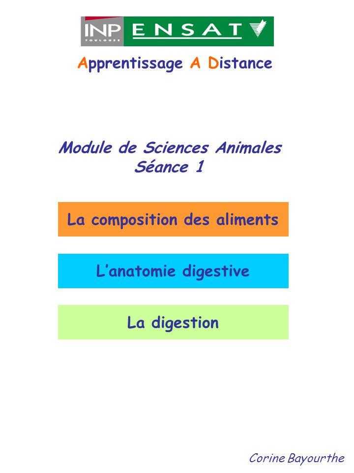 Module de Sciences Animales Séance 1 Apprentissage A Distance Corine Bayourthe La composition des aliments Lanatomie digestive La digestion