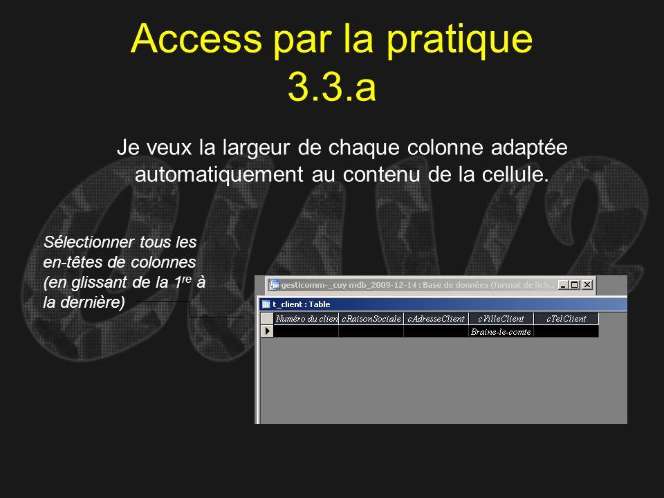 Access par la pratique 3.3.a Je veux la largeur de chaque colonne adaptée automatiquement au contenu de la cellule. Sélectionner tous les en-têtes de