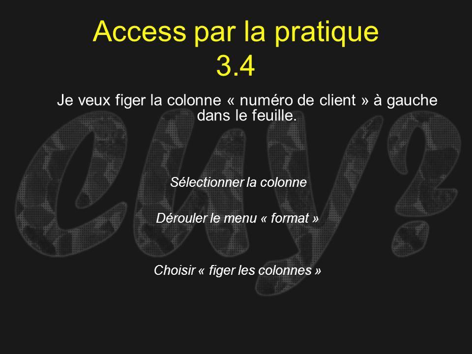 Access par la pratique 3.4 Sélectionner la colonne Je veux figer la colonne « numéro de client » à gauche dans le feuille. Dérouler le menu « format »