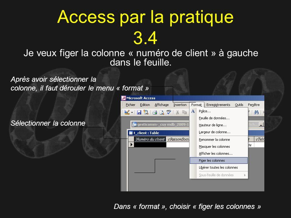 Access par la pratique 3.4 Sélectionner la colonne Dans « format », choisir « figer les colonnes » Après avoir sélectionner la colonne, il faut déroul