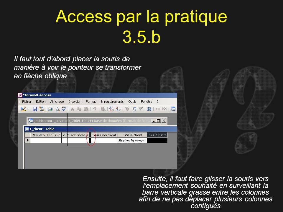 Access par la pratique 3.5.b Il faut tout dabord placer la souris de manière à voir le pointeur se transformer en flèche oblique Ensuite, il faut fair