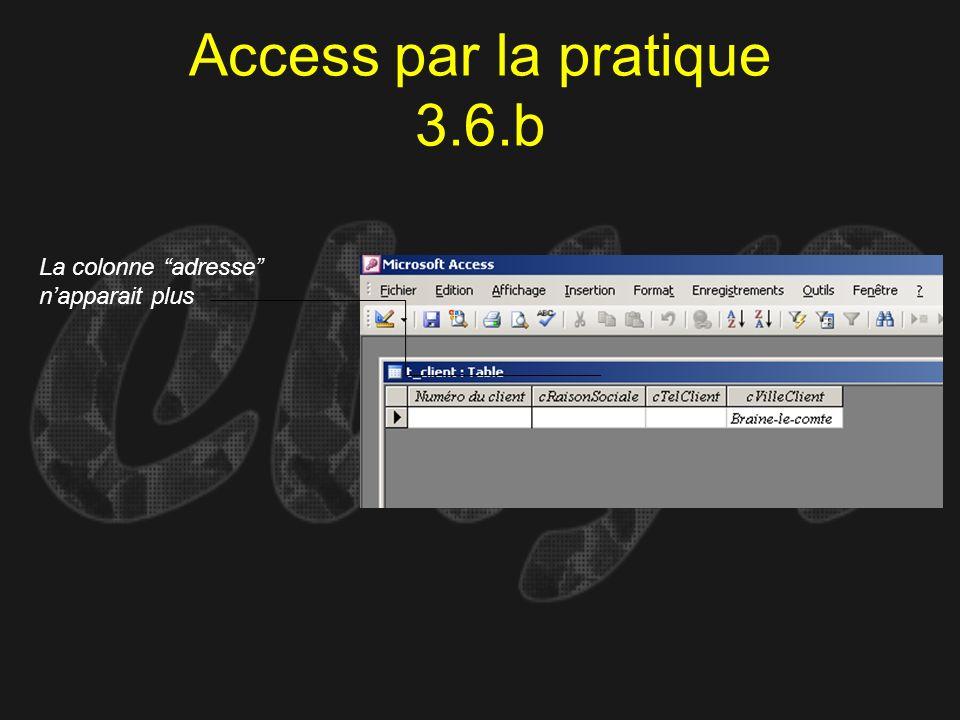 Access par la pratique 3.6.b La colonne adresse napparait plus