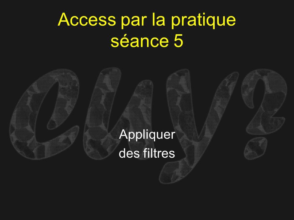 Access par la pratique séance 5 Appliquer des filtres