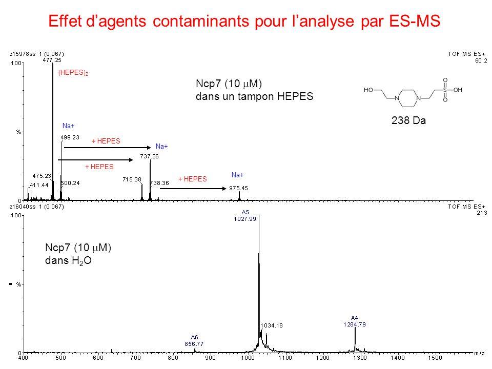 Effet dagents contaminants pour lanalyse par ES-MS Ncp7 (10 M) dans un tampon HEPES Ncp7 (10 M) dans H 2 O Na+ + HEPES 238 Da + HEPES (HEPES) 2 + HEPE