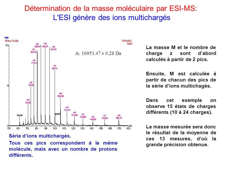 Détermination de la masse moléculaire par ESI-MS: L'ESI génère des ions multichargés A: 16951.47 ± 0.28 Da La masse M et le nombre de charge z sont da