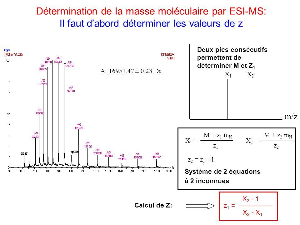 Détermination de la masse moléculaire par ESI-MS: Il faut dabord déterminer les valeurs de z A: 16951.47 ± 0.28 Da m/z X1X1 X2X2 X 2 - 1 z 1 = X 2 - X