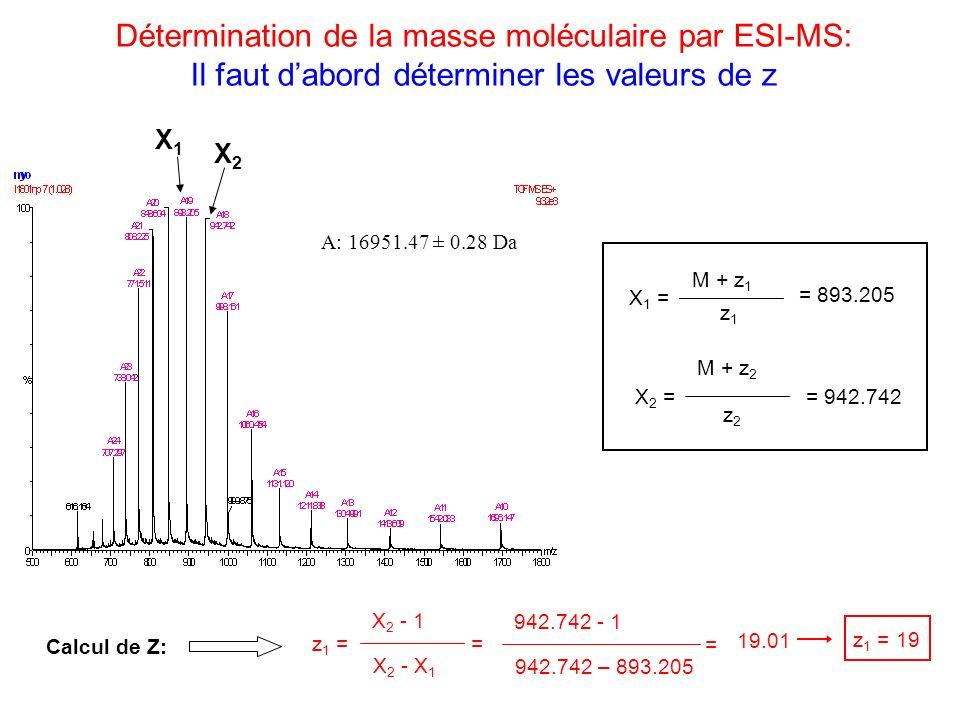 Détermination de la masse moléculaire par ESI-MS: Il faut dabord déterminer les valeurs de z A: 16951.47 ± 0.28 Da X1X1 X2X2 X 2 - 1 z 1 = X 2 - X 1 C
