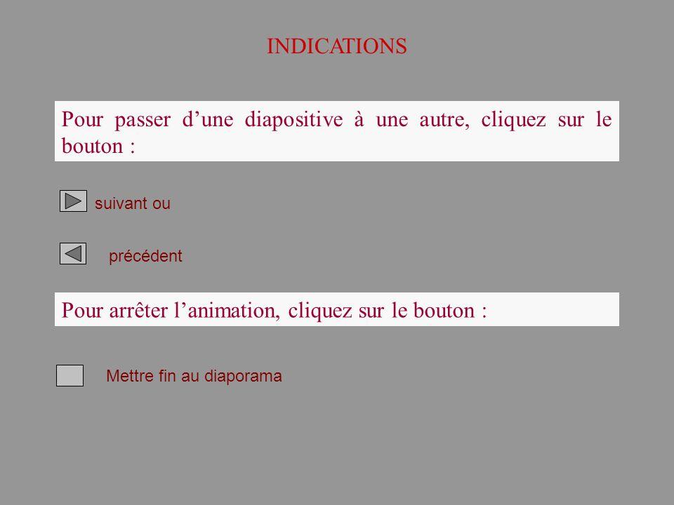 INDICATIONS Pour passer dune diapositive à une autre, cliquez sur le bouton : suivant ou précédent Pour arrêter lanimation, cliquez sur le bouton : Me