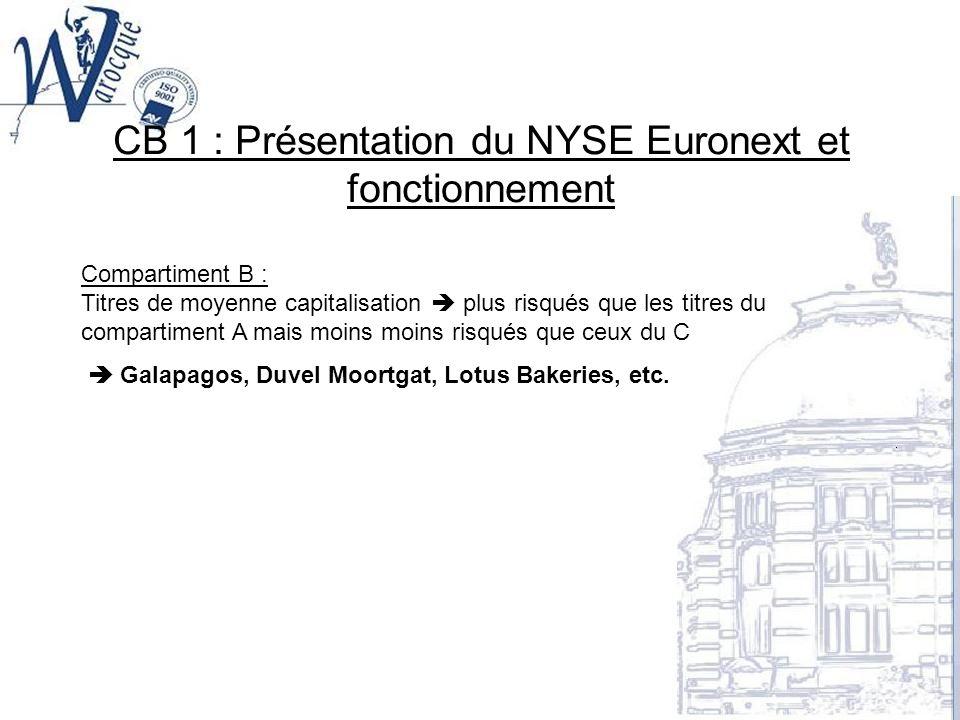 CB 1 : Présentation du NYSE Euronext et fonctionnement Compartiment B : Titres de moyenne capitalisation plus risqués que les titres du compartiment A