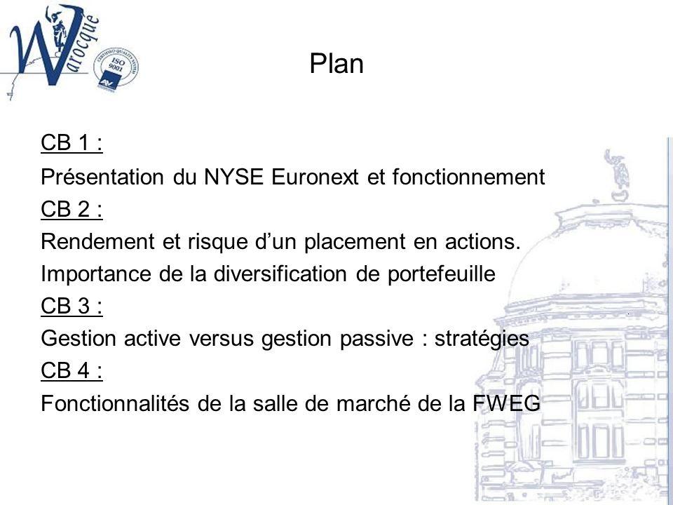 Plan CB 1 : Présentation du NYSE Euronext et fonctionnement CB 2 : Rendement et risque dun placement en actions. Importance de la diversification de p