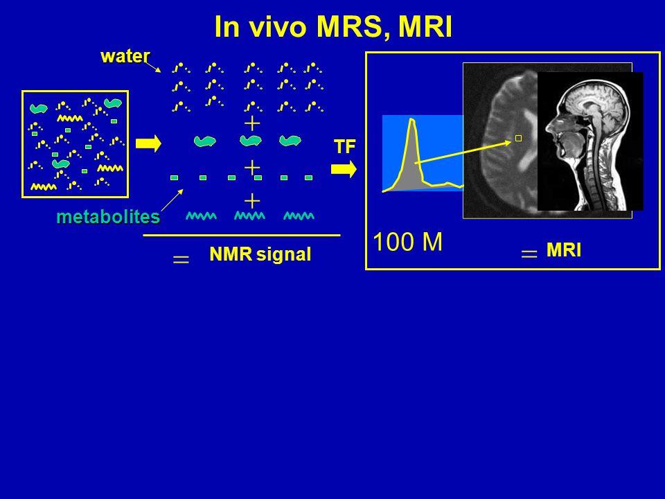 NMR signal TF MRI In vivo MRS, MRI 100 M water metabolites