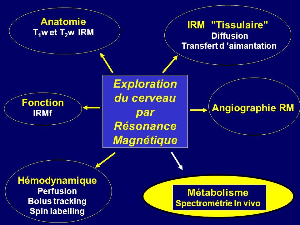 IRM Tissulaire Diffusion Transfert d aimantation Anatomie T 1 w et T 2 w IRM Hémodynamique Perfusion Bolus tracking Spin labelling Fonction IRMf Angiographie RM Exploration du cerveau par Résonance Magnétique Métabolisme Spectrométrie In vivo
