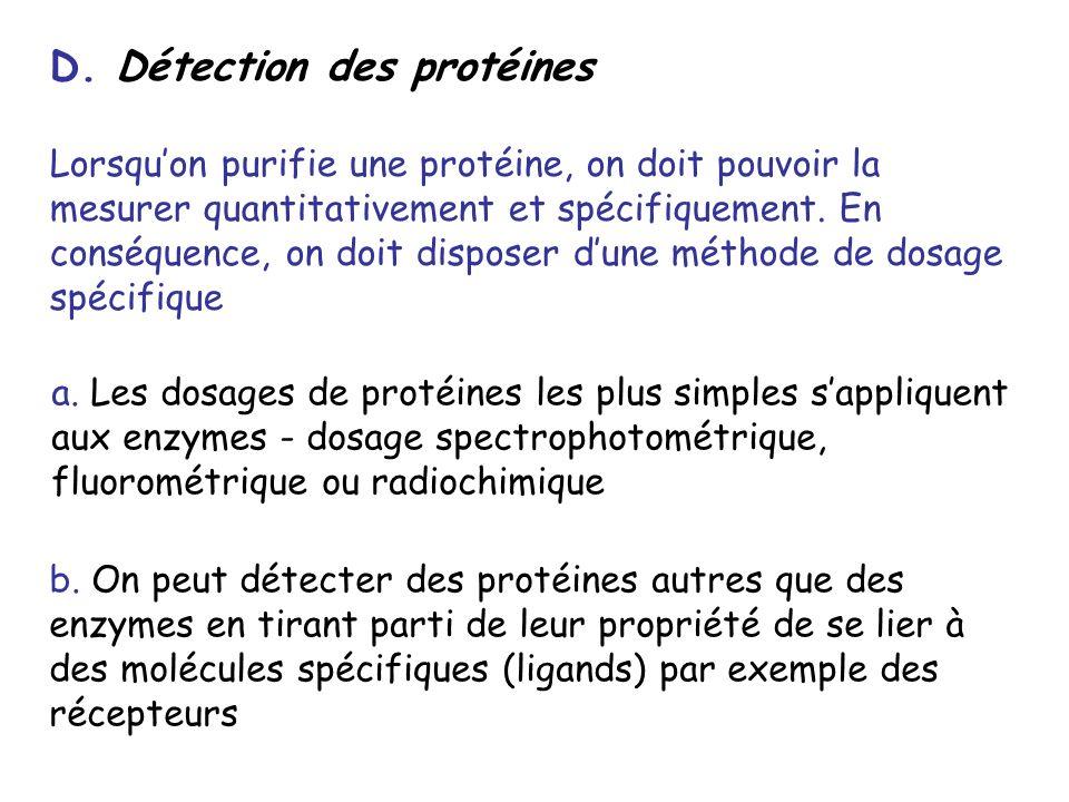 D. Détection des protéines Lorsquon purifie une protéine, on doit pouvoir la mesurer quantitativement et spécifiquement. En conséquence, on doit dispo