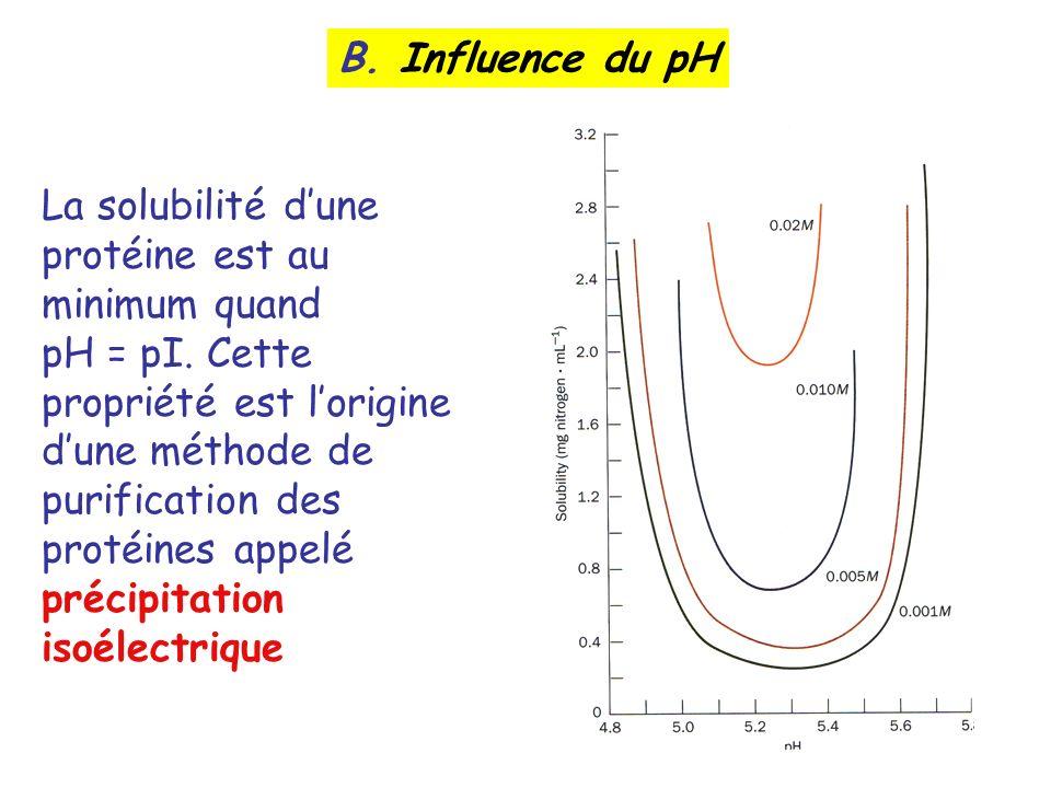 B. Influence du pH La solubilité dune protéine est au minimum quand pH = pI. Cette propriété est lorigine dune méthode de purification des protéines a