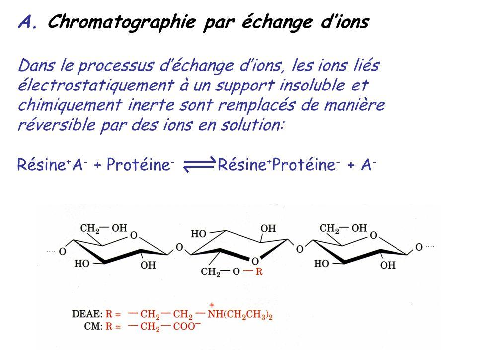 A. Chromatographie par échange dions Dans le processus déchange dions, les ions liés électrostatiquement à un support insoluble et chimiquement inerte