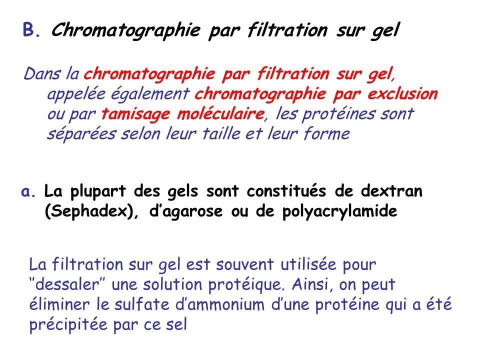 B. Chromatographie par filtration sur gel Dans la chromatographie par filtration sur gel, appelée également chromatographie par exclusion ou par tamis