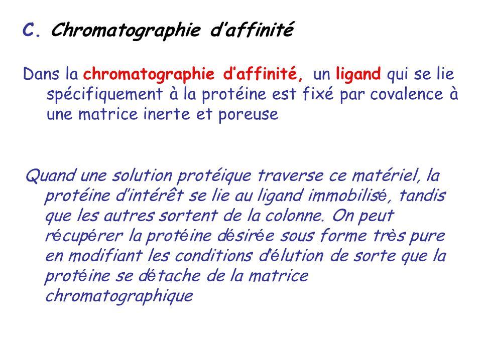 C. Chromatographie daffinité Dans la chromatographie daffinité, un ligand qui se lie spécifiquement à la protéine est fixé par covalence à une matrice