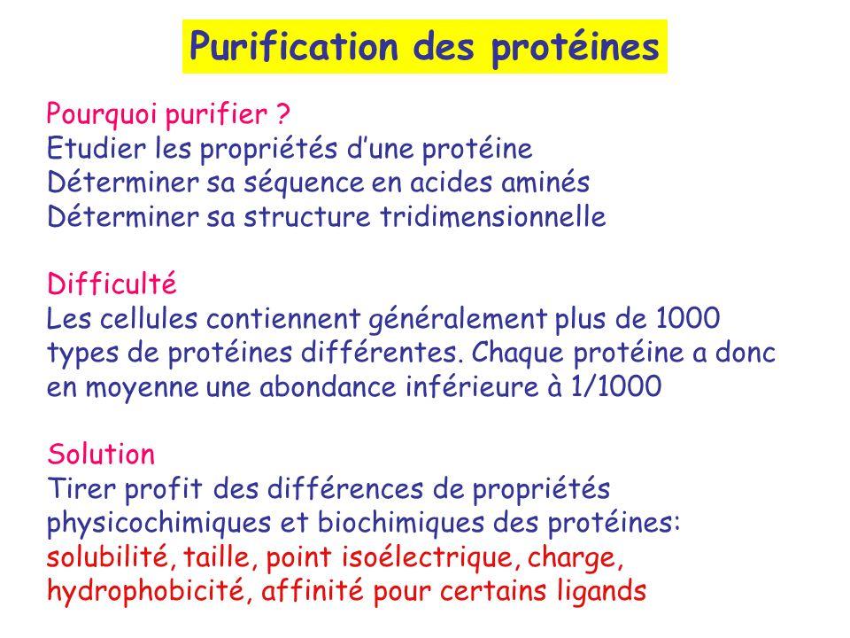 Purification des protéines Pourquoi purifier ? Etudier les propriétés dune protéine Déterminer sa séquence en acides aminés Déterminer sa structure tr