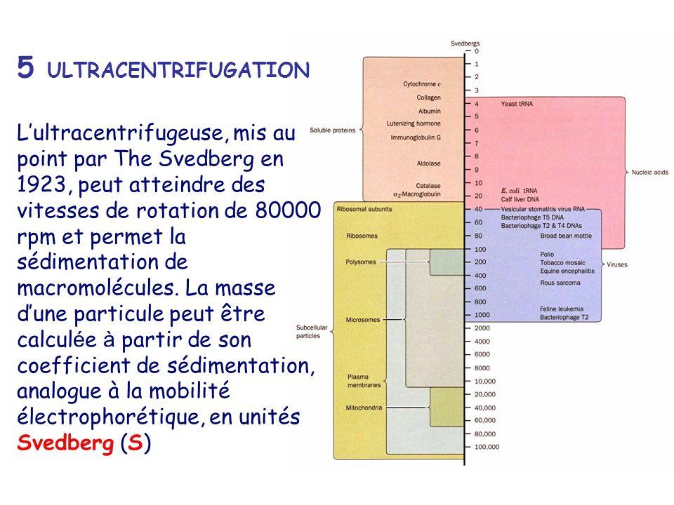 5 ULTRACENTRIFUGATION Lultracentrifugeuse, mis au point par The Svedberg en 1923, peut atteindre des vitesses de rotation de 80000 rpm et permet la sé